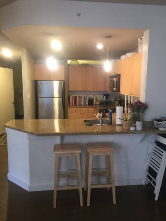 pet friendly columbia heights 2 bedroom apartment for rent