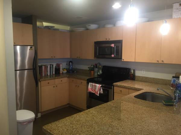 pet friendly 2 bedroom apartment in Columbia Heights