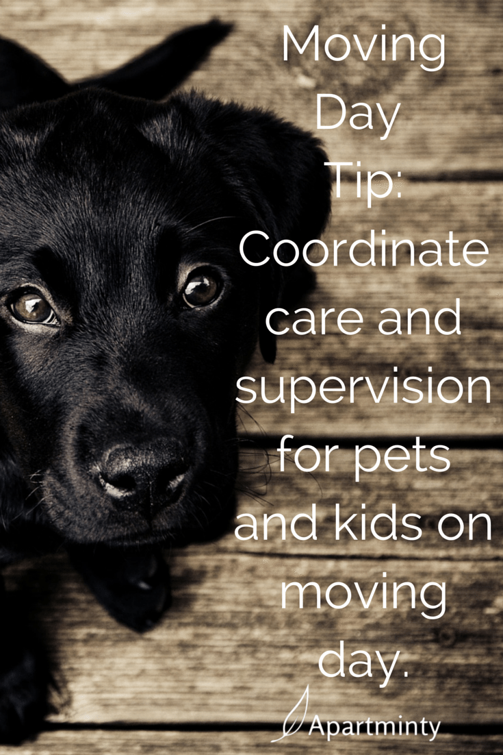 tips for pets and kids on moving day