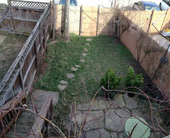 Two Level Two Bedroom Apartment in Eastern Market | Private fenced backyard with stone patio