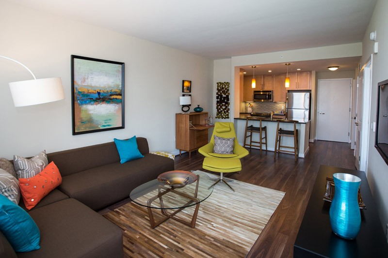 Luxury Pet Friendly Apartments in NoMa