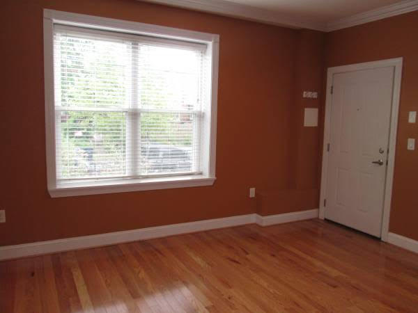Truly Pet Friendly Apartment in Petworth | Bedroom