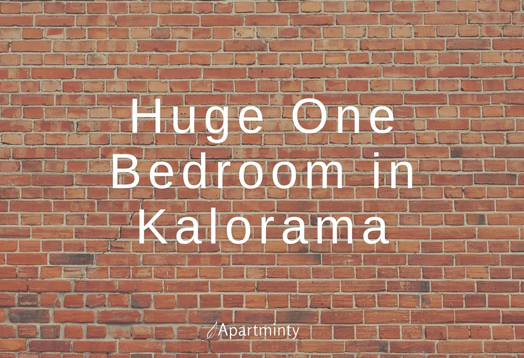 Huge One Bedroom in Kalorama