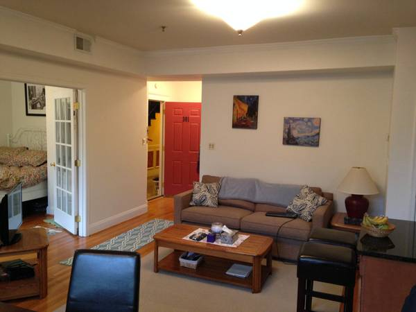 Open Concept Two Bedroom In Columbia Heights | Washington DC Apartments For Rent | Living Room
