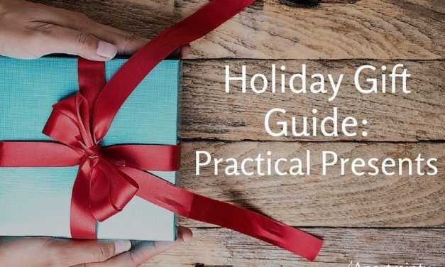 Holiday Gift Guide: What to Get That Practical Friend Of Yours
