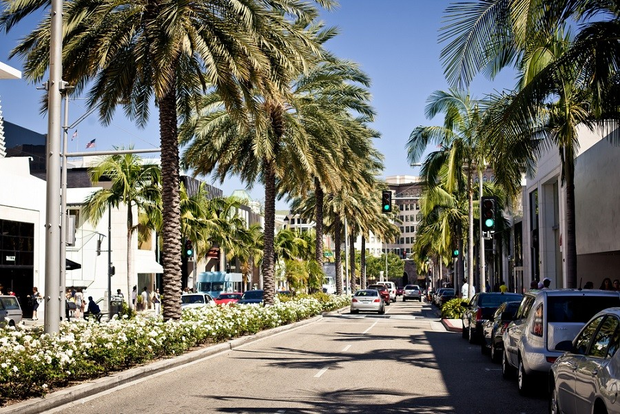Moving to LA | Ultimate Los Angeles Bucket List | Rodeo Drive