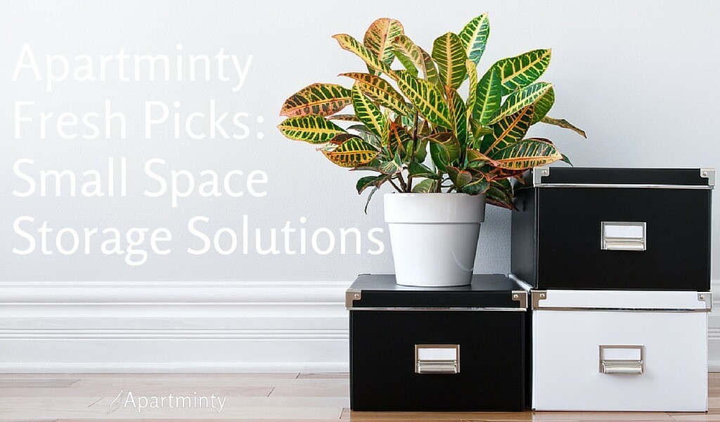 Apartminty Fresh Picks | Small Space Storage Solutions For Your Apartment