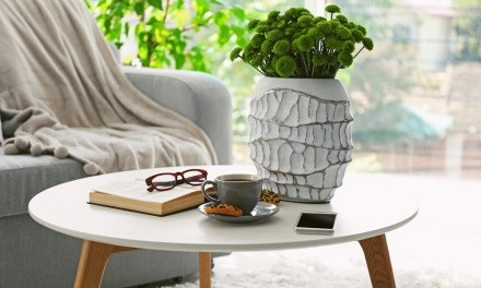 Apartminty Fresh Picks: Coffee Table Books