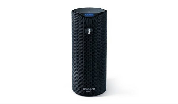 Apartminty Fresh Picks: Picnic Accessories | Amazon Tap Portable Bluetooth Enabled Speaker