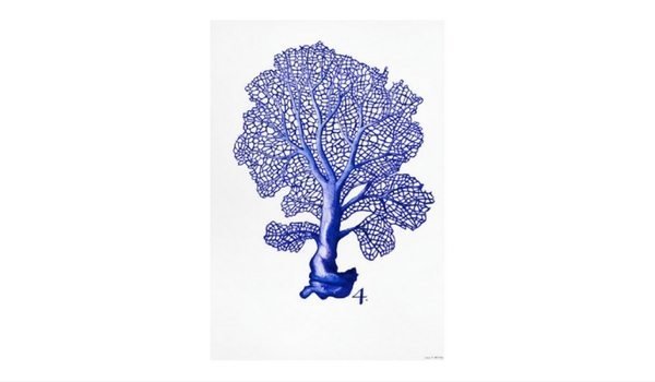 Apartminty Fresh Picks: Art For Your Gallery Wall | Sea Life in Pen 4 by Millie Brooks