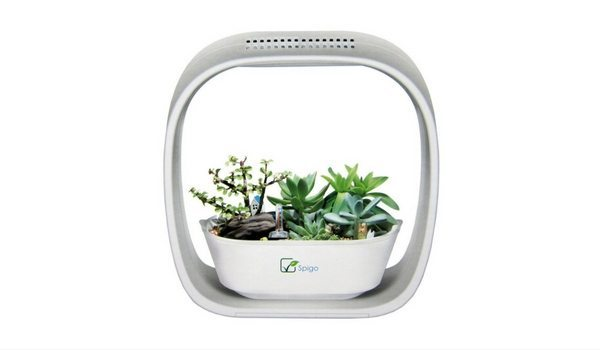 Apartminty Fresh Picks: Herb Garden Essentials For The Apartment Gardener | Spigo Indoor LED Light Grow Garden