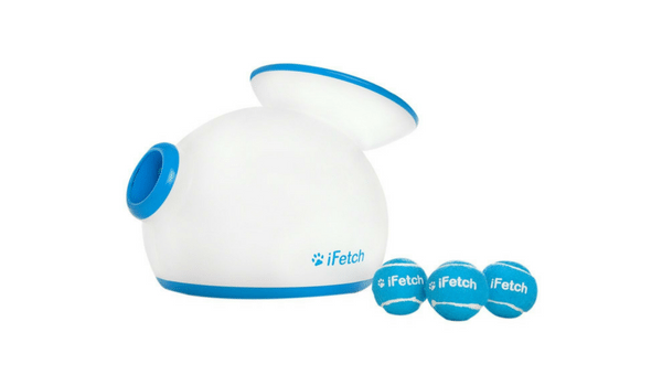 Apartminty Fresh Picks: Pet Products | iFetch Interactive Ball Thrower