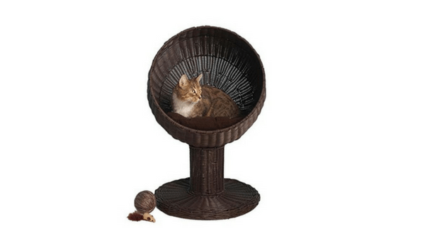 Apartminty Fresh Picks: Pet Products | The Refined Feline's Kitty Ball Bed