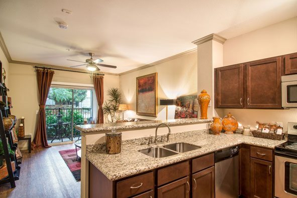3-camden-midtown-houston-texas-apartments-one-and-two-bedroom-stainless-steel-appliances-granite-countertops