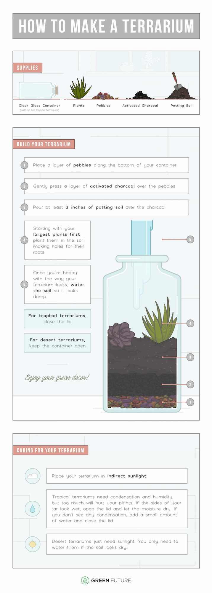 DIY Succulent Terrarium For Your Apartment