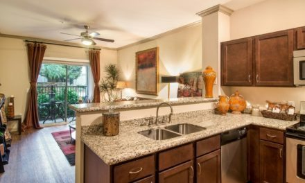 Pet-Friendly Two Bedroom Apartment In Houston