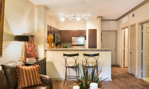 Spacious One Bedroom Apartment In Houston's Midtown Neighborhood