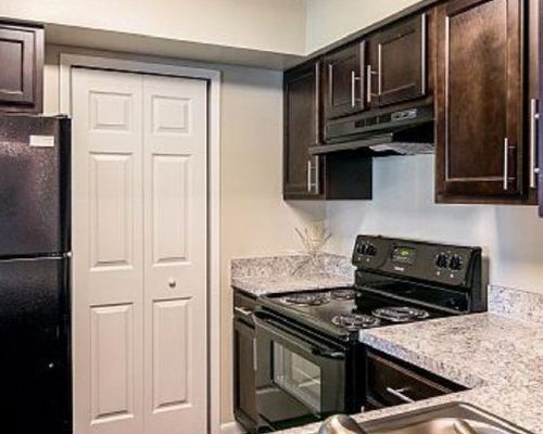 the-vineyards-cheap-apartments-in-kissimmee-fl-kitchen