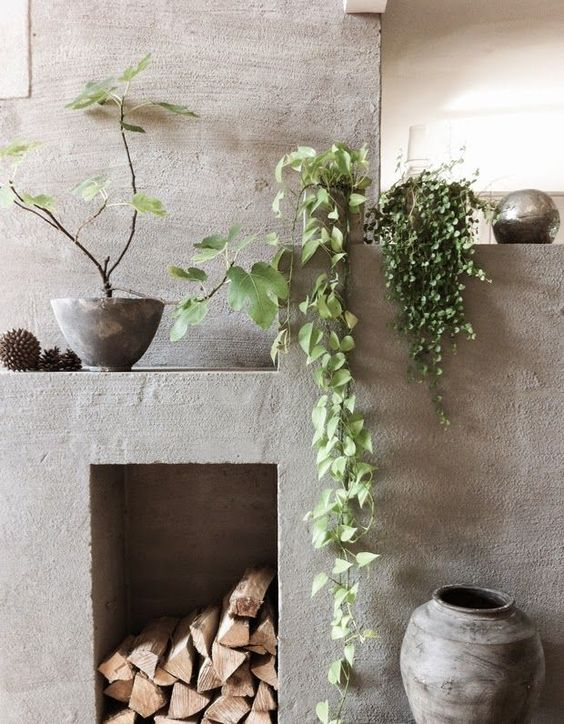 Spring Decor Trends | Indoor Climbing Plants