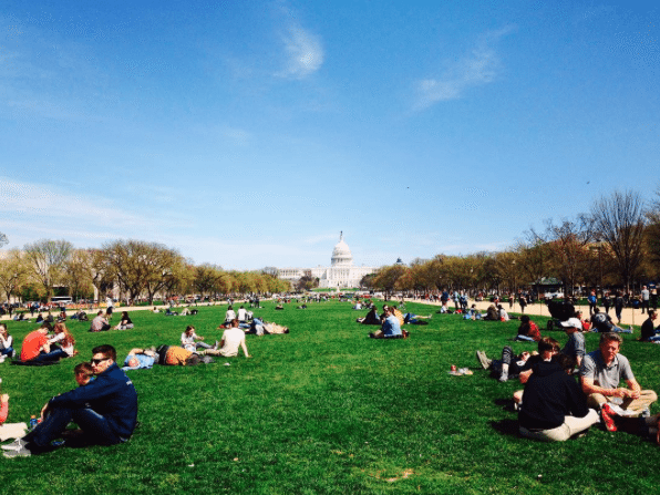 Picnic Spots In DC | National Mall
