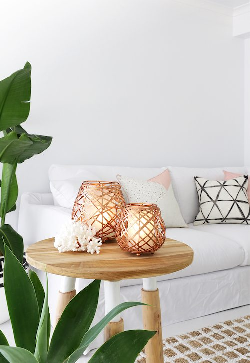 5 Things Minimalist Apartments Make Room For   Live Plants