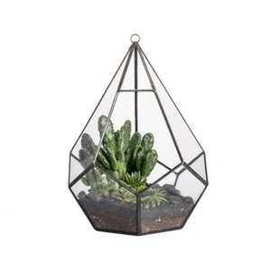 Mother's Day Gift Ideas | Teardrop Glass Plant Terrarium