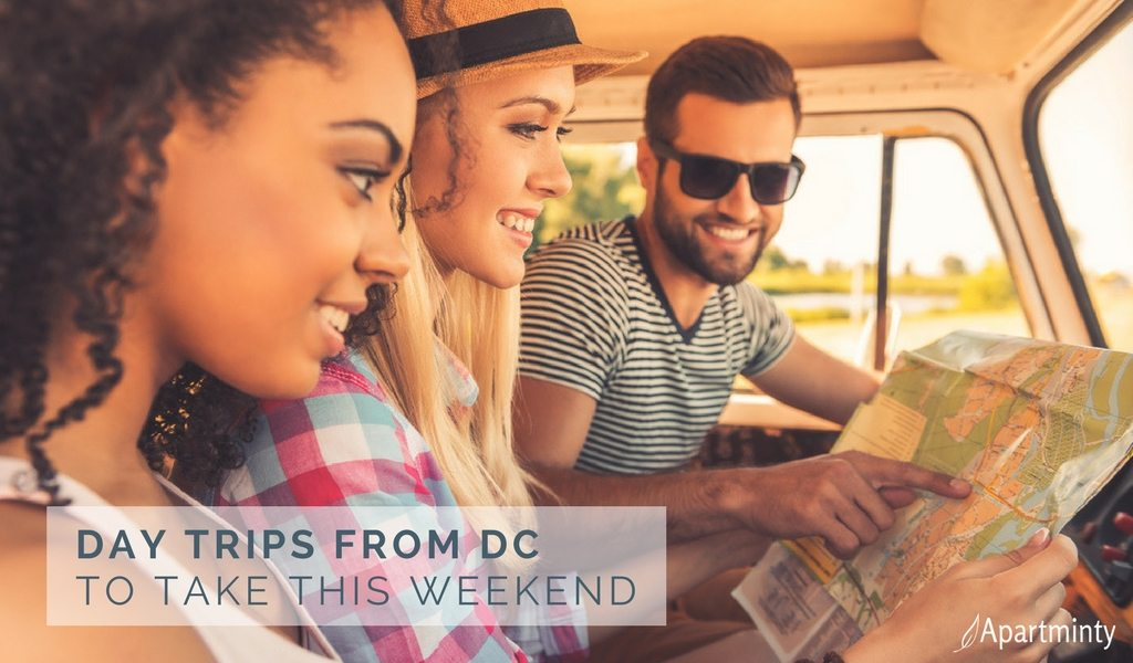 DC Day Trips To Take This Weekend | Day Trips From DC