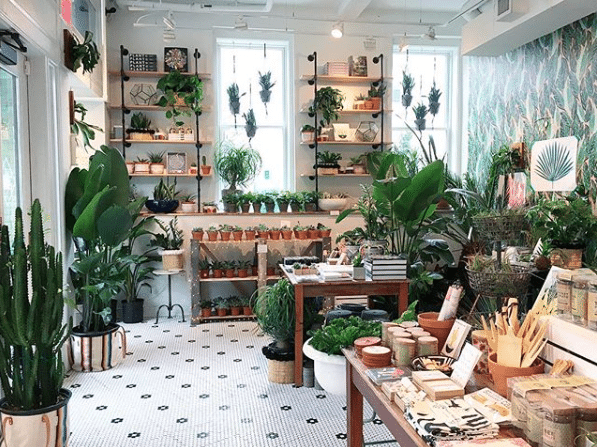 Little Leaf Shop | Holiday Gifts In DC