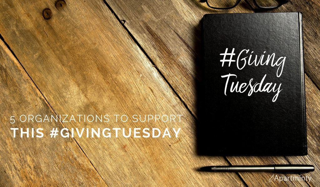 Giving Tuesday | Organizations To Support