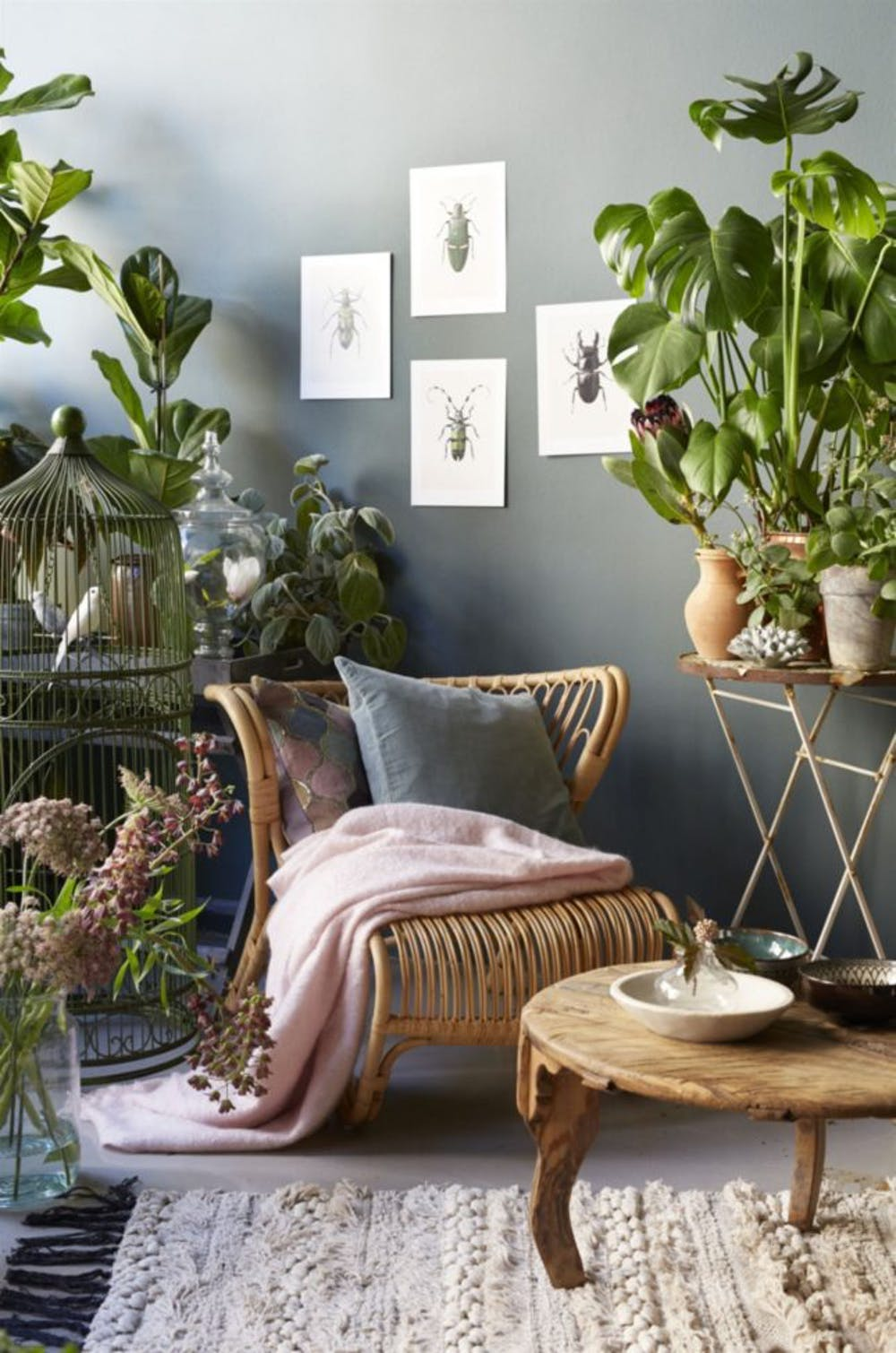 Urban Jungle Decorating Kitchen: Urban-jungle-decor-1