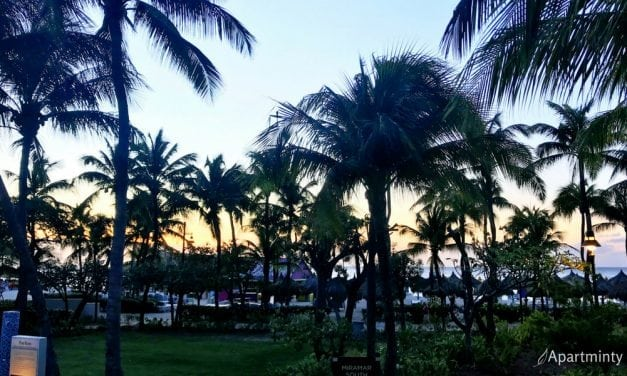 Travel Logs: Palm Beach, Aruba 5 Things to Know