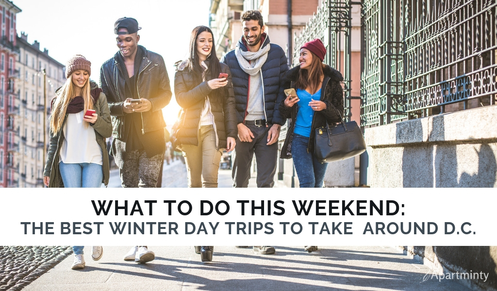 Winters in DC| Day trips from Washington, DC