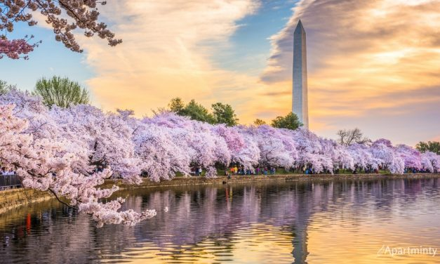 Can't-Miss March Events in DC