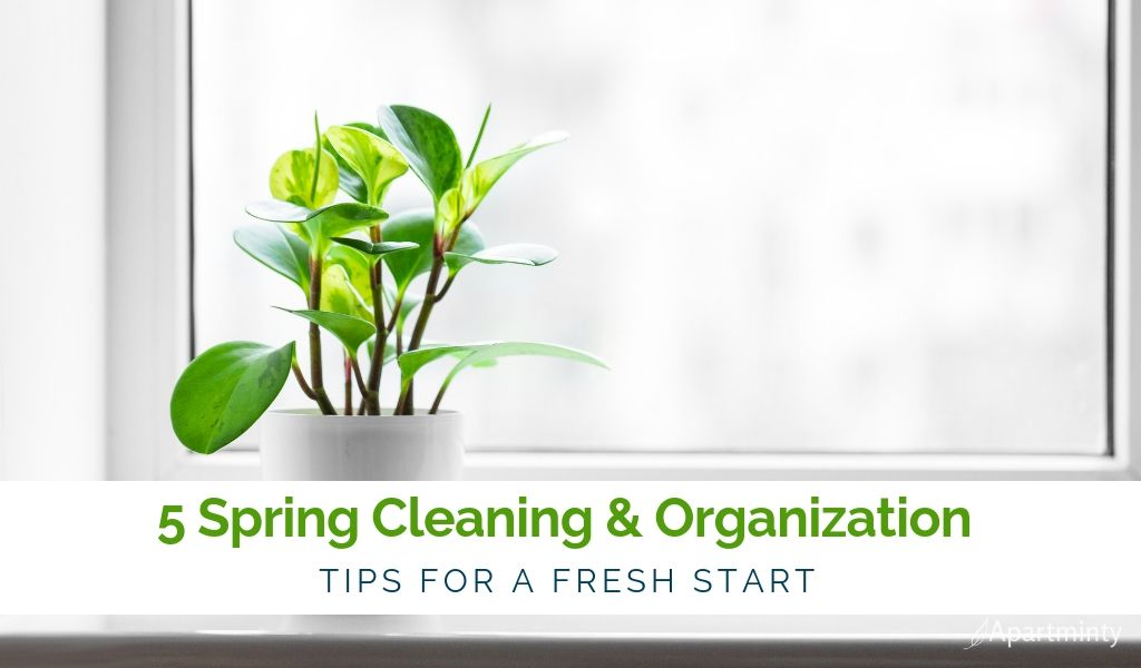 5-SPRING-CLEANING-TIPS-TO-ORGANIZE