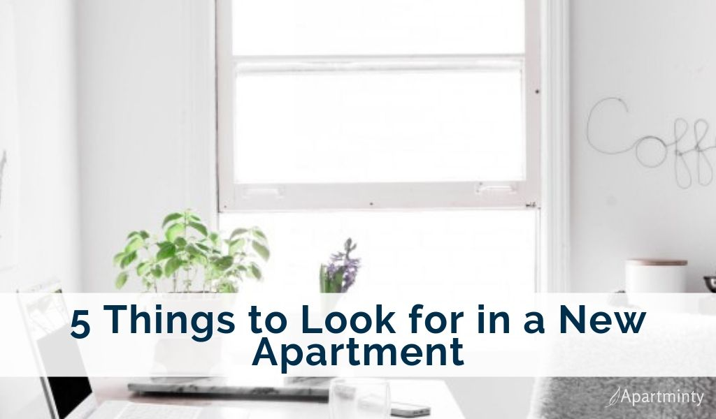 5-things-to-look-for-in-a-new-apartment