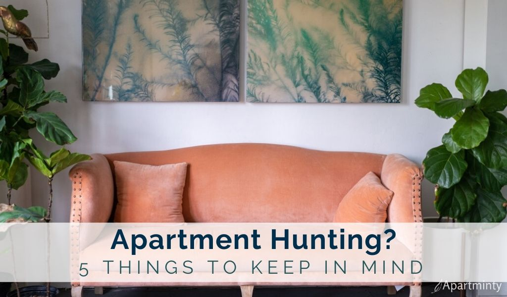 5-things-to-consider-when-apartment-hunting