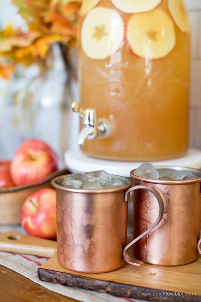 Spiced-Apple-Rum-Punch