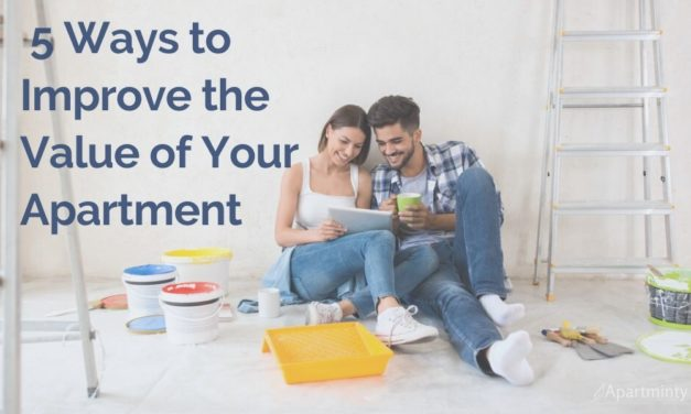 Great Ways to Improve the Value of Your Apartment This Year