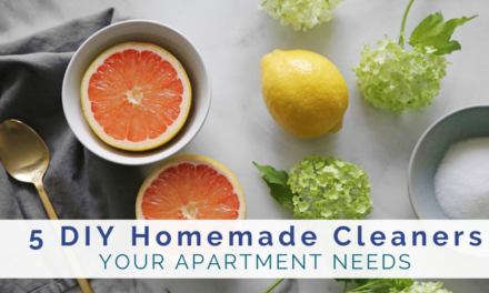 5 DIY Homemade Cleaners Your Apartment Needs