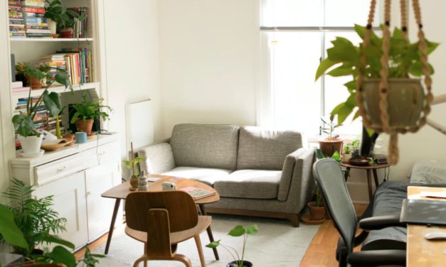 How to Make Your Apartment More Eco-Friendly